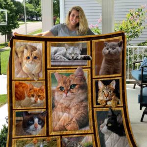 Lovely Cat Pictures Quilt Blanket Great Customized Gifts For Birthday Christmas Thanksgiving Perfect Gifts For Cat Lover