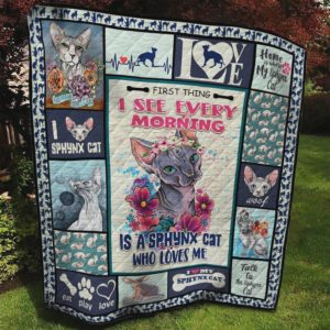 Cat Talk To Sphynx Cat Quilt Blanket Great Customized Blanket Gifts For Birthday Christmas Thanksgiving