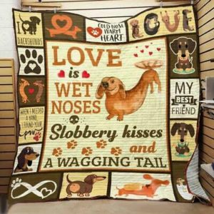 Dachshund Love Is Wet Noses Sloberry Kisses And A Wagging Tail Quilt Blanket Great Customized Blanket Gifts For Birthday Christmas Thanksgiving