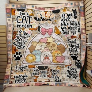 I'm A Cat Person Colored Cats In The Gift Bag Quilt Blanket Great Customized Blanket Gifts For Birthday Christmas Thanksgiving