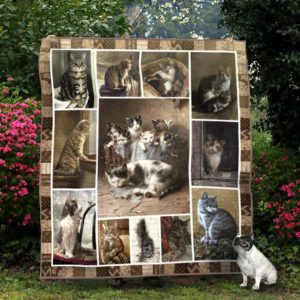 Cool Cat Family Mother And Her Cubs Squares Pattern Quilt Blanket Great Customized Blanket Gifts For Birthday Christmas Thanksgiving
