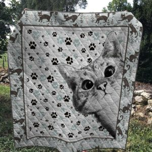 Cat And Cat Paws Quilt Blanket Great Customized Blanket Gifts For Birthday Christmas Thanksgiving Anniversary