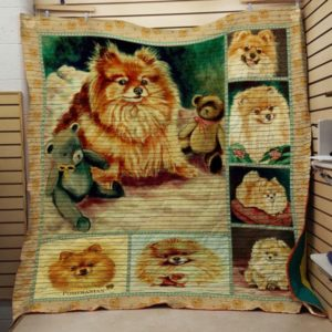Pomeranian With Teddy Bear Quilt Blanket Great Customized Blanket Gifts For Birthday Christmas Thanksgiving