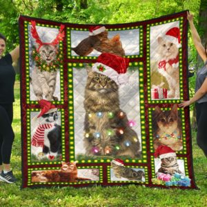 Best Gift For Cat Lovers On Christmas Quilt Blanket Great Gifts For Birthday Christmas Thanksgiving Anniversary