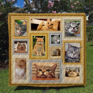 Cat Emotion Cute Cat Pictures  Funny Cats Quilt Blanket Great Customized Blanket Gifts For Birthday Christmas Thanksgiving